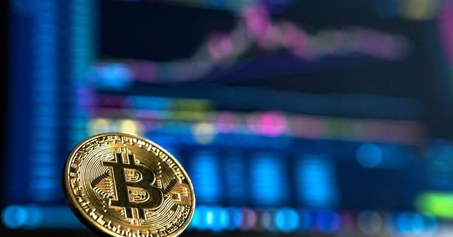 Kezdő útmutató a kriptovaluta szerencsejátékhoz